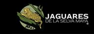 Jaguares de la Selva Maya